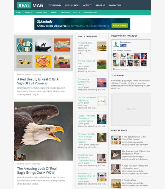 Mẫu Theme Blogger Đẹp Miễn Phí 33
