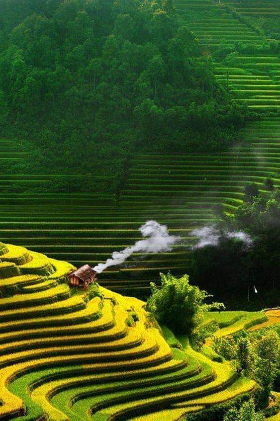 Lạm bàn về Con người Việt Nam 7