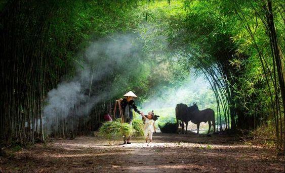 Lạm bàn về Con người Việt Nam 8